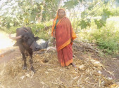Sakkavva Ramachandra Mang