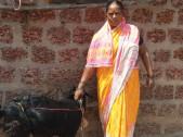 Sangeeta Cgannappa Malage