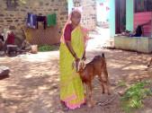 Subhadra Indrabayi Metri