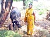 Sangita Anand Metri
