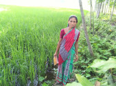 Rupali Begum