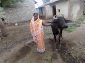 Bharati Basappa Mang