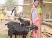 Shantavva Mahaning Kamble