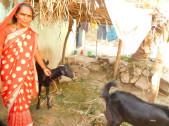 Renuka Hanamnth Narasannavar