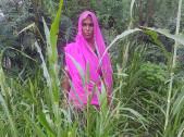 Lali Devi