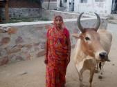 Sushila Meena