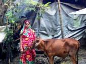 Nasrin Begum