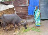 Biba Janaba Kamble