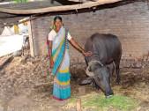 Suvarna Bhavu Kamble