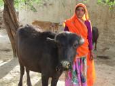 Ghishi Devi