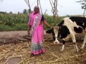 Sunita Ganapati Shandage
