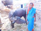Mahadevi Balappa Durgappagol