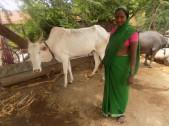 Mayavva Kallappa Devarmani