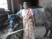 Hanamavva Yamanappa Madar
