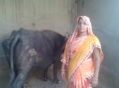Mainka Devi