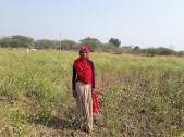 Hansa Devi