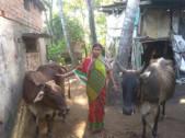 Suchitra Patra