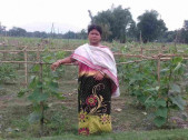 Tultuli Bhadra Sarkar