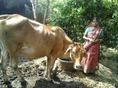Suchitra Mondal