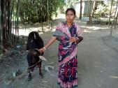 Sudharani Das