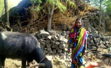 Sughanda, the group leader, with her buffalo