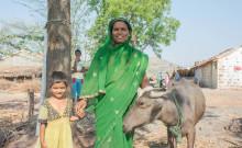 Shobha with her buffalo