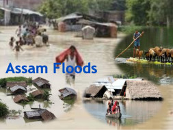 Assam Floods: Urgent Appeal to Help Affected