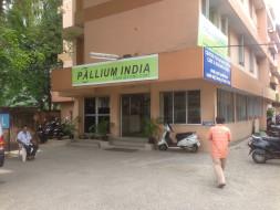 Help Paint Pallium!