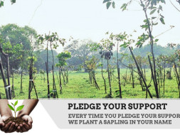 Help us build a platform for Social Impact and community development