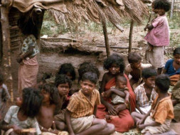 This New Year, let's feed tribal children in Attappadi, Kerala