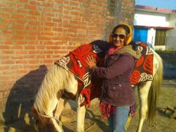 #BeBoldForChange. Help us to set up an animal shelter home in Bareilly
