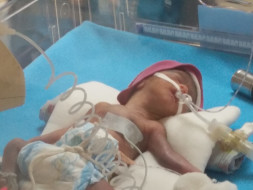 Help This Couple Save Their Extremely Premature Baby