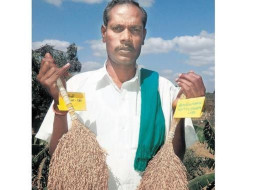Savior of 150 paddy varieties in India faces battle against cancer