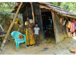 Help Ancy build a house