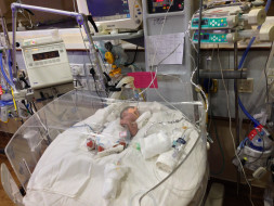 Help a baby to recover ang go Home From The NICU