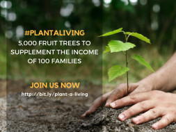 Plant A Tree, Gift A Living