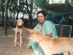 Chanda Has Saved Many Animals, Now She Needs Our Help To Walk Again