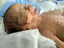 Help Priya save her premature twins
