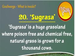 Sugrasa At GouSwarga