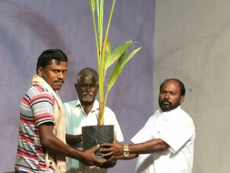 Project UYIUTHULIR- Planting A Tree.