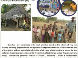 Providing Solar Lights To Tribal Families  At Nallamala Forest