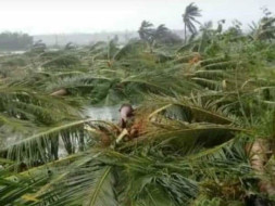 Save My Village From Natural Disaster Gaja Cyclone