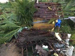 Save Delta TN Gaja Cyclone Relief Campaign