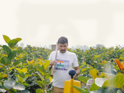 Help police officer Devender Sura to plant 1 lakh trees