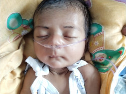 Help A One Month Old Baby Survive