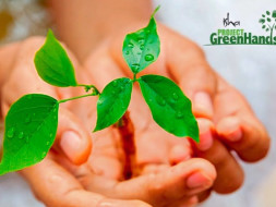 Plant Trees with Project Green Hands! Let's do our part