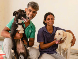Help Us Build A Forever Home for Special Needs Dogs!
