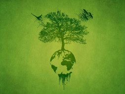 GREEN INDIA FOUNDATION