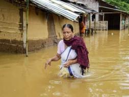 Support Assam: Flood Felief