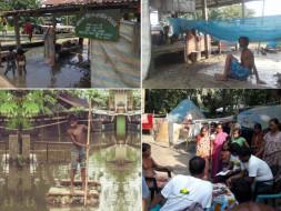 Urgent Appeal to Support Assam Flood Survivors